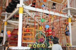 Indoor Obstacle & Climbing Arena for Sale