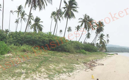 6704009 Beachfront Land in Koh Samui, Thailand for Sale - Suitable for Hotel/Resort
